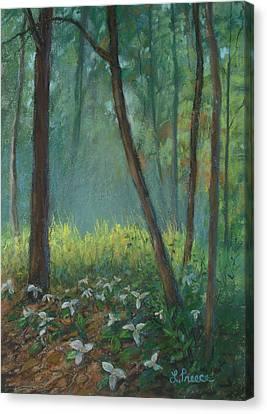 Trillium Trail Canvas Print by Linda Preece