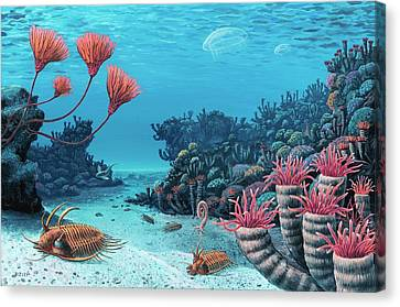 Trilobites Of The Early Devonian Canvas Print by Richard Bizley