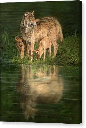 Trio Of Wolves Canvas Print by David Stribbling
