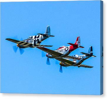 Triple Mustangs Canvas Print by Puget  Exposure
