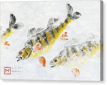 Triple Perch Canvas Print by Matt Monahan