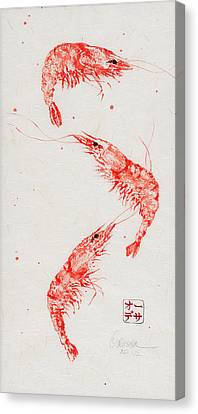 Gyotaku Canvas Print - Triple Shrimp by Odessa Kelley