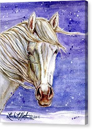 Tripod Wild Stallion Of The Sand Wash Basin Canvas Print