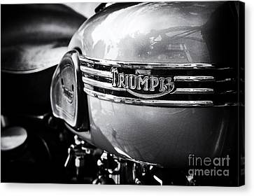 Triumph Tiger T110 Motorcycle Canvas Print by Tim Gainey