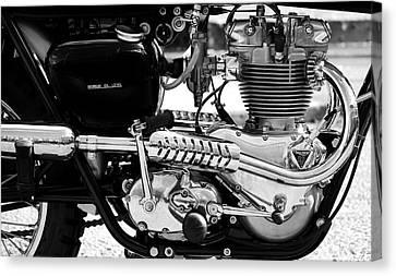 Triumph Twin Canvas Print by Mark Rogan