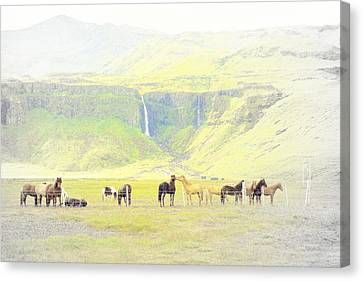 Early Morning In The Mountains Vision  Canvas Print by Hilde Widerberg