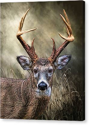 Canvas Print featuring the digital art Trophy 10 Point Buck by Mary Almond