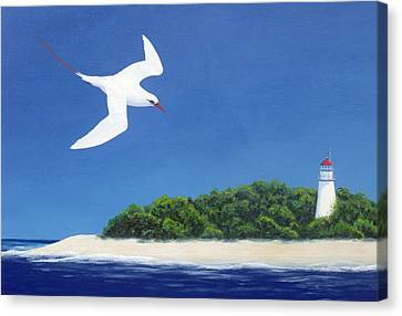Tropic Bird And Light House Canvas Print