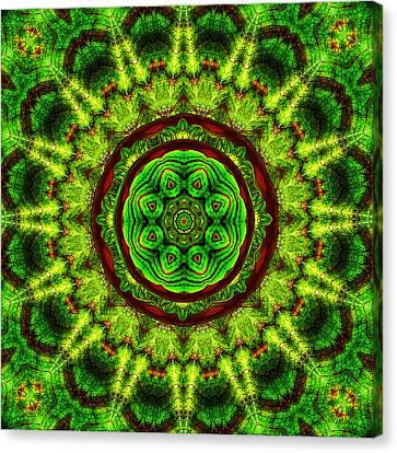 Tropic Leaf Pattern Mandala Canvas Print by Deborah Smith