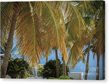 Tropical Afternoon Canvas Print by Mary Lou Chmura