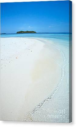 Tropical Beach In The Maldives Canvas Print