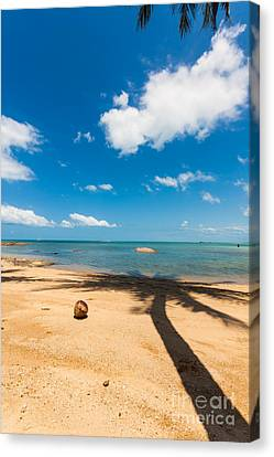 Canvas Print - Tropical Beach Koh Samui Thailand by Fototrav Print