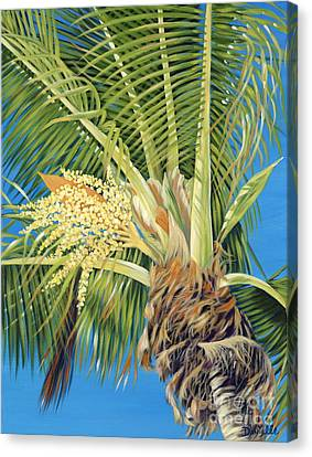Tropical Bloom Canvas Print by Danielle  Perry
