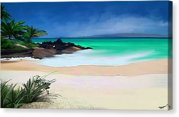 Tropical Charm Canvas Print by Anthony Fishburne
