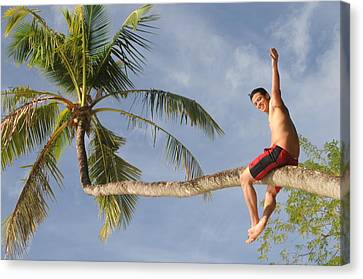 Canvas Print featuring the photograph Tropical Climb by Paul Miller