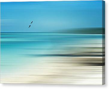 Tropical Cove Horizon Canvas Print by Deborah Smith