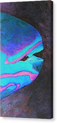 Tropical Fishtych 02 C-right Canvas Print