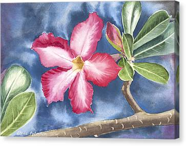 Tropical Flower Canvas Print
