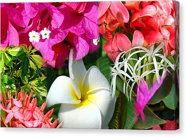 Tropical Flower Power 2 Canvas Print
