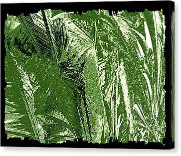 Tropical Foliage Canvas Print by Will Borden