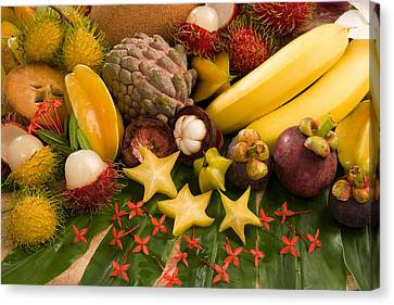 Tropical Fruit Canvas Print by Science Source