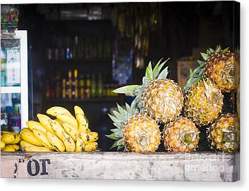 Tropical Fruits Canvas Print by Tuimages