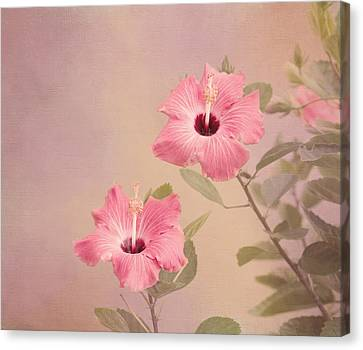 Tropical Hibiscus Canvas Print by Kim Hojnacki