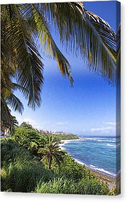 Tropical Holiday Canvas Print by Daniel Sheldon