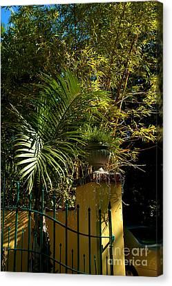 Tropical Invitation Canvas Print by Susanne Van Hulst