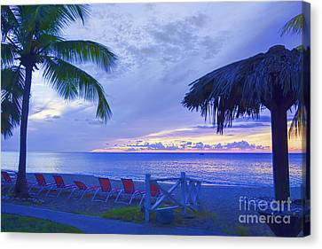 Tropical Island Canvas Print by Betty LaRue