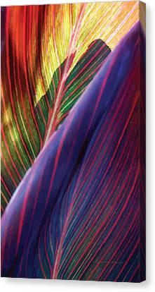 Tropical Leaf No. 2 Canvas Print