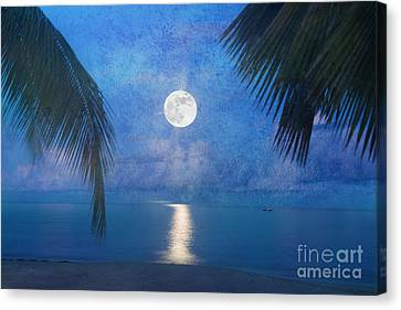 Tropical Moonglow Canvas Print by Betty LaRue