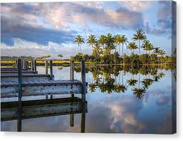 Tropical Morning Canvas Print by Debra and Dave Vanderlaan