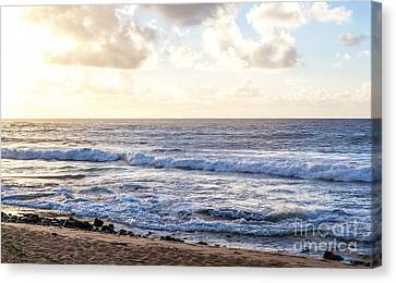 Canvas Print featuring the photograph Tropical Morning  by Roselynne Broussard