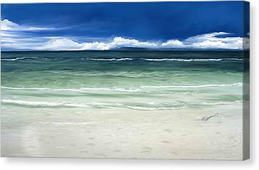 Tropical Ocean Canvas Print by Anthony Fishburne