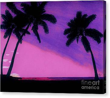 Tropical Sunset Canvas Print - Tropical Pink Sunset by D Hackett
