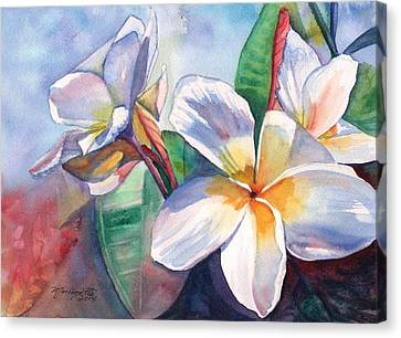 Tropical Plumeria Flowers Canvas Print