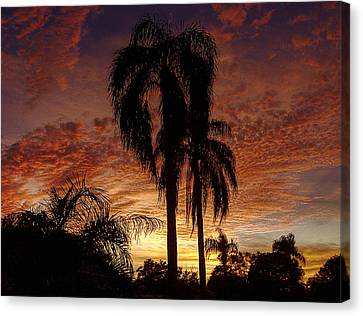 Tropical Sunset Canvas Print by Kandy Hurley