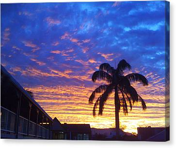 Tropical Sunset View Canvas Print by Ankya Klay