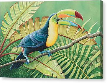 Tropical Toucan Canvas Print
