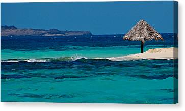 Canvas Print featuring the photograph Tropical Umbrella by Don Schwartz