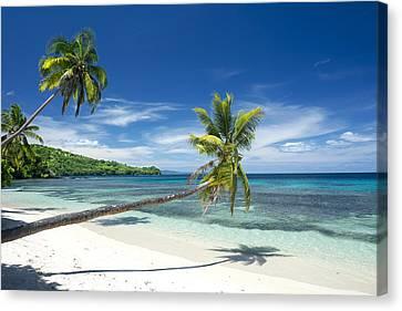 Tropical White Sand Beach Canvas Print