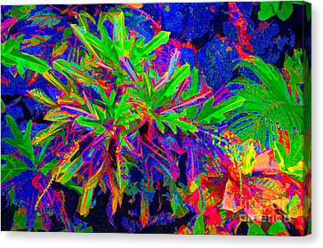 Canvas Print featuring the photograph Tropicals Gone Wild by David Lawson