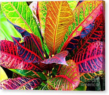 Tropicals Gone Wild Naturally Canvas Print
