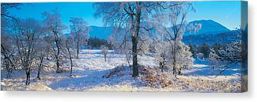 Snow-covered Landscape Canvas Print - Trossachs National Park, Scotland by Panoramic Images