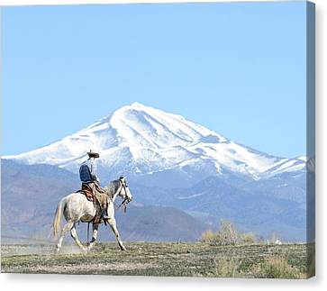 Trotting Out Canvas Print by Lee Raine