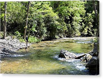 Trout Fishing Canvas Print by Susan Leggett