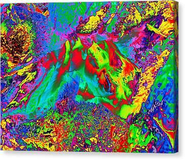 True Colors 3963 Canvas Print by Maciek Froncisz