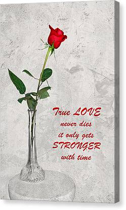 Canvas Print featuring the photograph True Love Never Dies by Dawn Currie