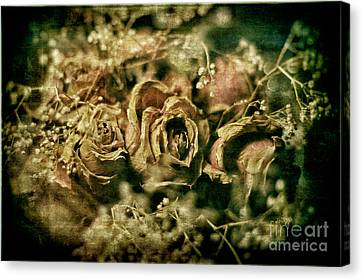 True Love Never Dies Canvas Print by Lois Bryan